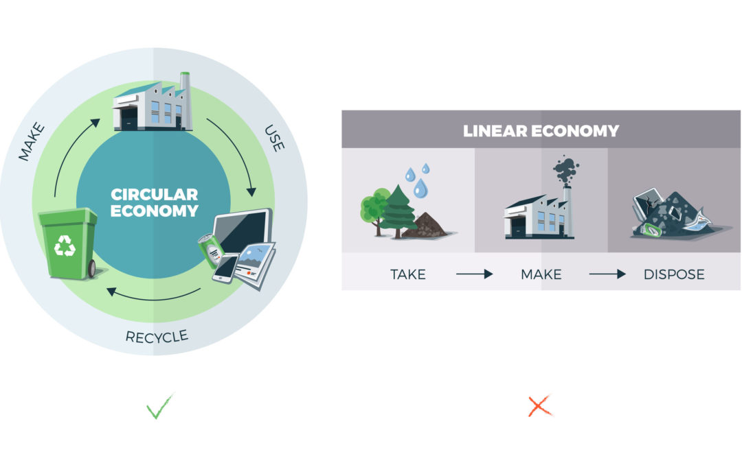 What is the Circular Economy?